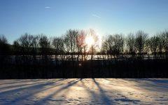 zima_sneh_stromy_slnko